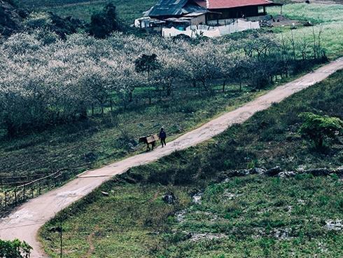 Những khu biệt thự lãng mạn cho kỳ nghỉ 2/9 gần Hà Nội-6