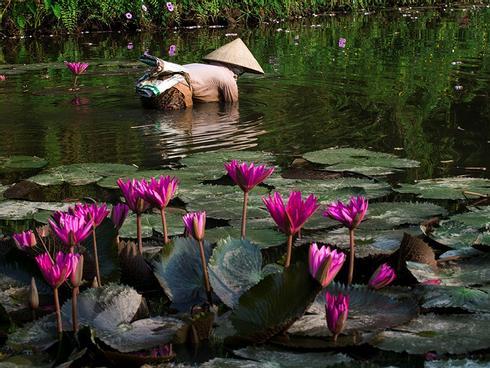 Nghỉ lễ Quốc khánh, về Ninh Bình trải nghiệm cuộc sống mộc mạc