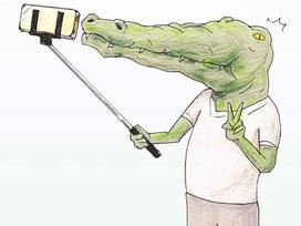 Bộ tranh: Cá sấu sẽ bi hài ra sao nếu sống như loài người?