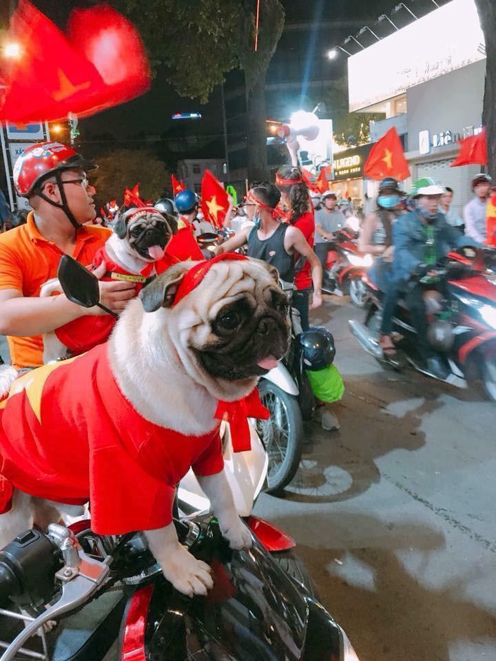 1.001 cách cổ động viên ăn mừng chiến thắng của Olympic Việt Nam-3