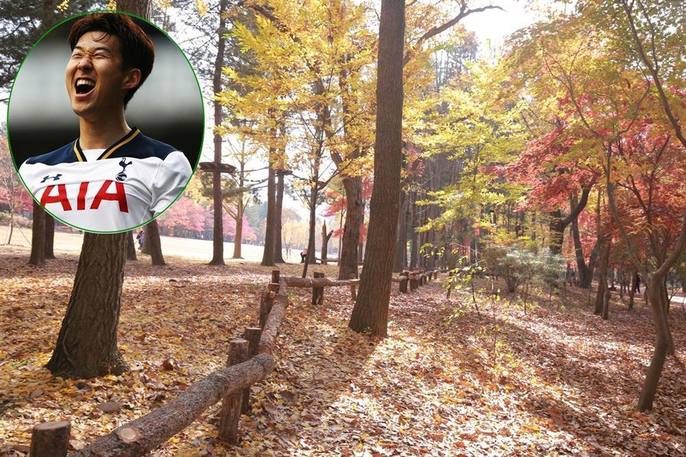 Cảnh thiên nhiên đẹp tuyệt ở nơi Son Heung-min chào đời-1