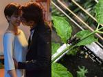 An Nguy nữ tính và đẹp xuất sắc, ôm chặt Kiều Minh Tuấn khi cùng nhau chụp poster phim-11