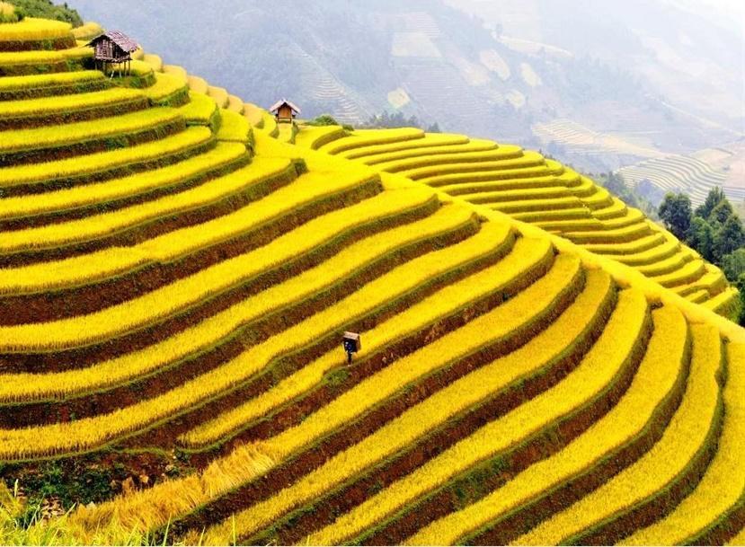 Top 14 địa điểm du lịch đẹp và hấp dẫn nhất Việt Nam bạn nên check-in 1 lần trong đời-14