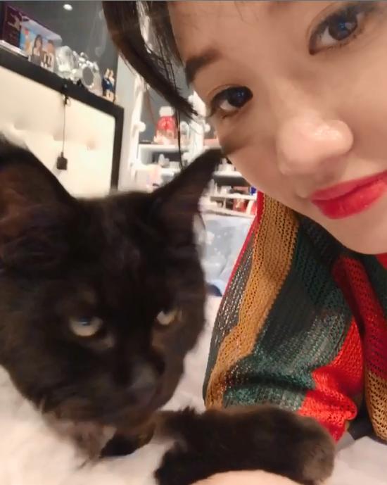 Sau khi cạo trụi lông mèo cưng 3.000 USD, Hari Won quay clip khoe nó ok lắm dù Trấn Thành uất ức khóc không ra tiếng-4