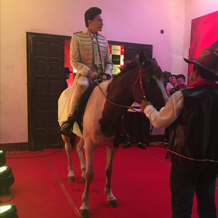 Ôm thú cưng lên thảm đỏ - xu hướng mới đánh gục sao Việt bất chấp chó hôi, ngựa hý-1
