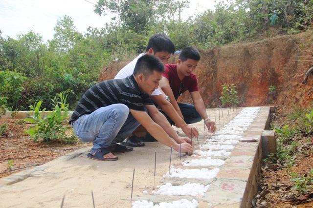 Quảng Trị:  Ba chàng trai trẻ tình nguyện lập nghĩa trang chôn cất các hài nhi xấu số-6