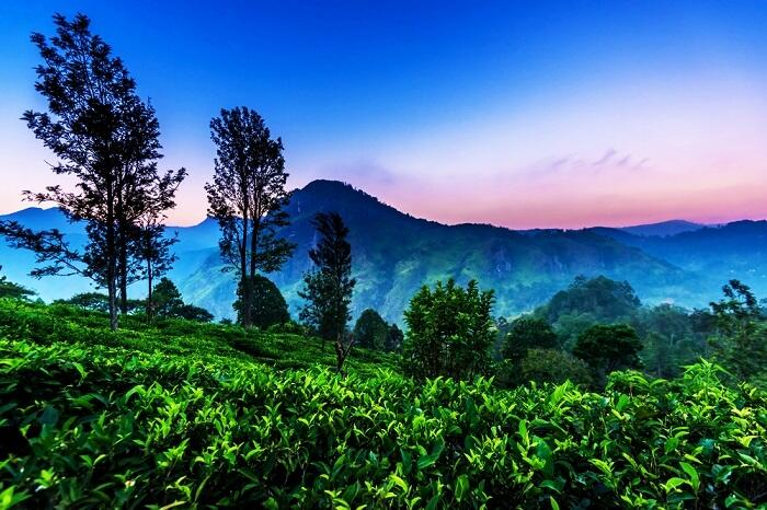Tháng 10 đi du lịch, đừng bỏ lỡ những điểm đến tuyệt vời ngay gần Việt Nam này-10