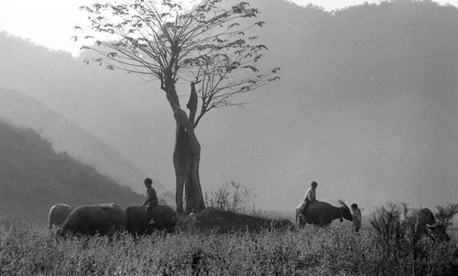 Vẻ đẹp thuần khiết, đầy cảm xúc của Đồng Văn qua ảnh đen trắng-3