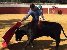 Kinh hoàng cảnh người đàn ông bị bò húc trong lễ hội