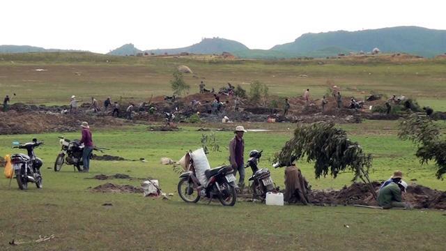 Phú Yên: Đá lạ được thu mua 3 triệu đồng/kg, hàng ngàn người đổ xô tìm kiếm-1