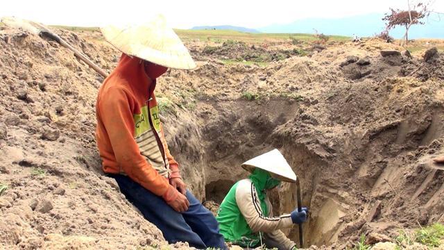 Phú Yên: Đá lạ được thu mua 3 triệu đồng/kg, hàng ngàn người đổ xô tìm kiếm-4