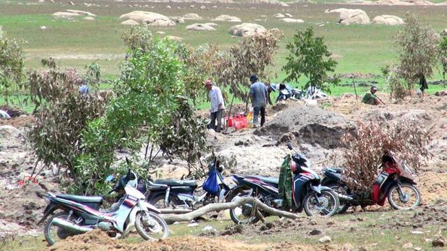 Phú Yên: Đá lạ được thu mua 3 triệu đồng/kg, hàng ngàn người đổ xô tìm kiếm-5