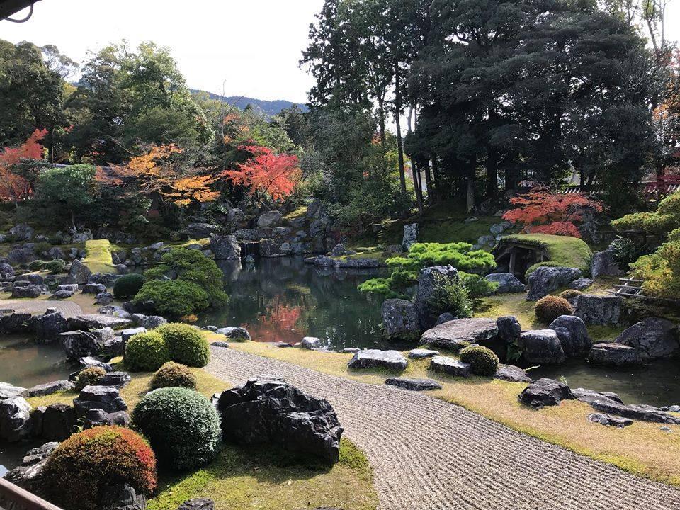 Mùa thu lá đỏ ở Nhật Bản đẹp đến ngẩn ngơ lòng người-1