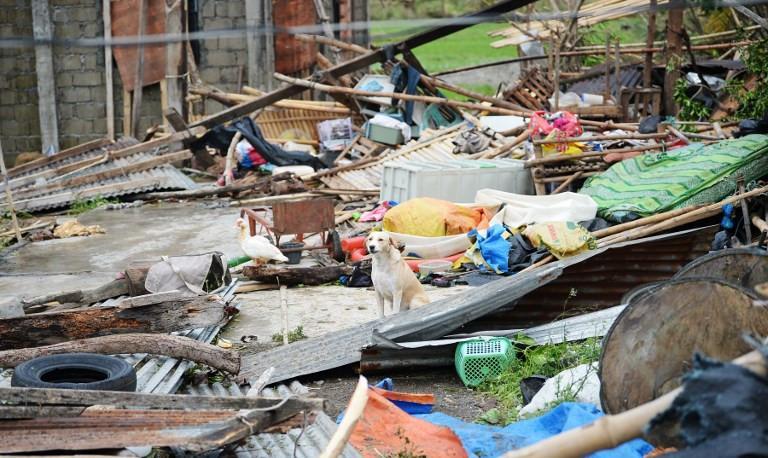Miền Bắc Philippines tan hoang sau siêu bão Mangkhut, 14 người chết-7