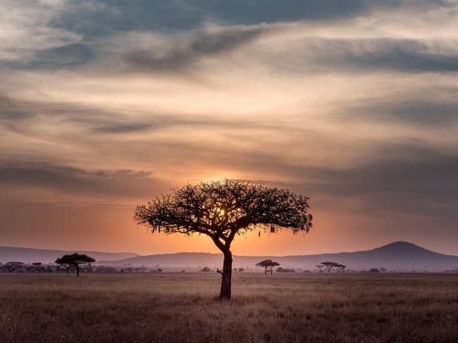 Giật mình với phong cảnh đẹp lạ lùng khắp châu Phi-12