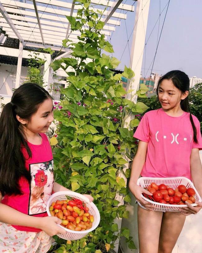 Con gái MC Quyền Linh khiến dân mạng phát sốt vì vừa xinh lại sở hữu cặp chân dài miên man như người mẫu-2