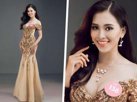 Hoa hậu Trần Tiểu Vy bị 'ném đá': Bảng điểm thấp có liên quan gì đến trí tuệ?