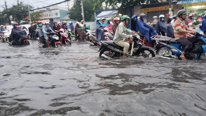Nhiều tuyến Sài Gòn ngập sâu sau mưa lớn-3