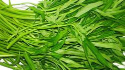 Sai lầm khi ăn rau muống cần loại bỏ ngay nếu không muốn mang họa vào người