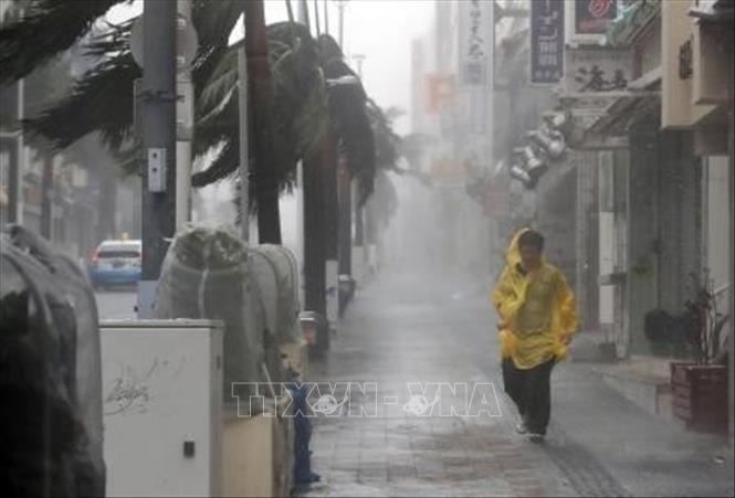 Bão Trami càn quét, nhiều tỉnh ở Nhật Bản ngừng mọi dịch vụ đường sắt, hàng không-1