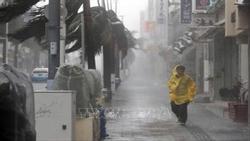 Bão Trami 'càn quét', nhiều tỉnh ở Nhật Bản ngừng mọi dịch vụ đường sắt, hàng không
