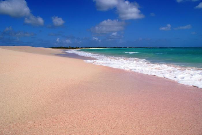 Những bãi biển có bờ cát hồng kỳ ảo nhất thế giới-8