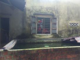 Vụ cháu bé chết bất thường ở hồ cá: Nghi phạm là 1 thiếu nữ