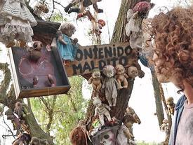 Hình ảnh rợn gáy trên đảo búp bê ma quái ở Mexico
