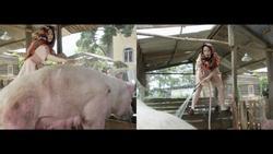 Ngân Khánh 'bá đạo' khi đi giày cao gót 30 triệu để tắm heo