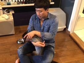 Gạt 'thâm thù' với Hari Won, Trấn Thành bắt tay bà xã cùng chữa bệnh cho mèo cưng 3.000 USD