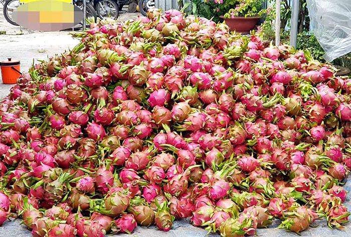 Sâu béo nhung nhúc: Đặc sản kinh hoàng, dân Việt nhậu lai rai-5