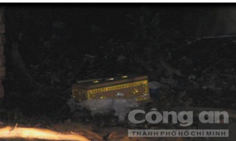 Quan tài chứa thi thể thai nhi trong bãi rác ở Bình Dương-1