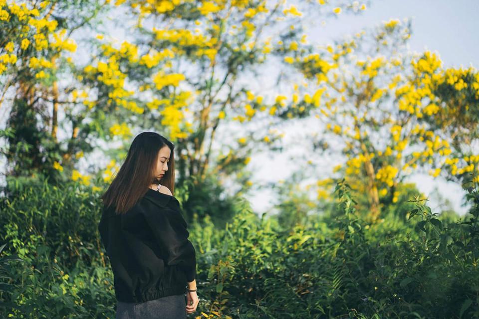 Đến Gia Lai ngất ngây trước rừng hoa muồng vàng rực-3