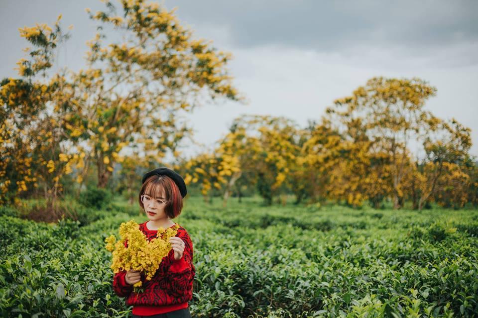 Đến Gia Lai ngất ngây trước rừng hoa muồng vàng rực-6