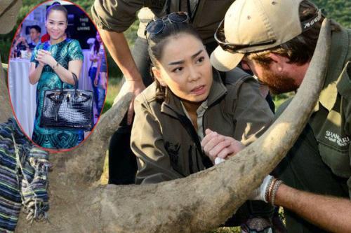 Khoe quà tặng nửa tỷ, Thu Minh bị bóc phốt kêu gọi bảo vệ động vật nhưng vô tư dùng túi da cá sấu và mật gấu tươi-5