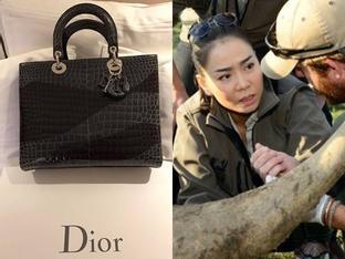 Khoe quà tặng nửa tỷ, Thu Minh bị bóc phốt 'kêu gọi bảo vệ động vật nhưng vô tư dùng túi da cá sấu và mật gấu tươi'