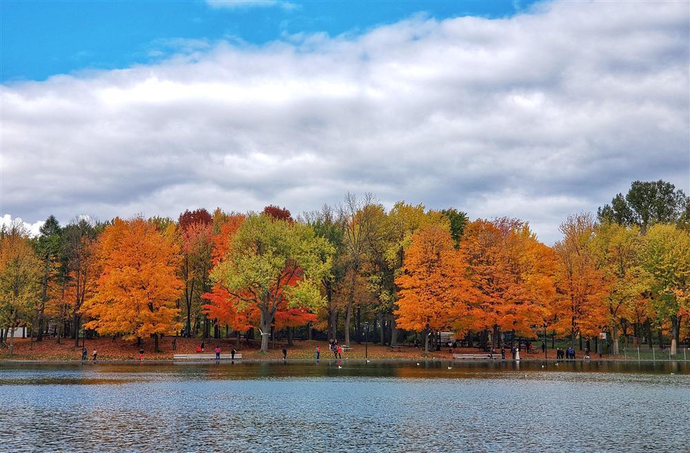 Say đắm vẻ đẹp Paris giữa vùng trời Bắc Mỹ mùa thay lá-2