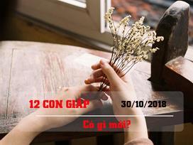 Tử vi thứ Ba ngày 30/10/2018 của 12 con giáp: Tuổi Mùi mất tiền, tuổi Hợi mọi sự hanh thông