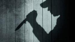 Lạng Sơn: Bắt giữ 'nghịch tử' nghi đánh mẹ nuôi tử vong