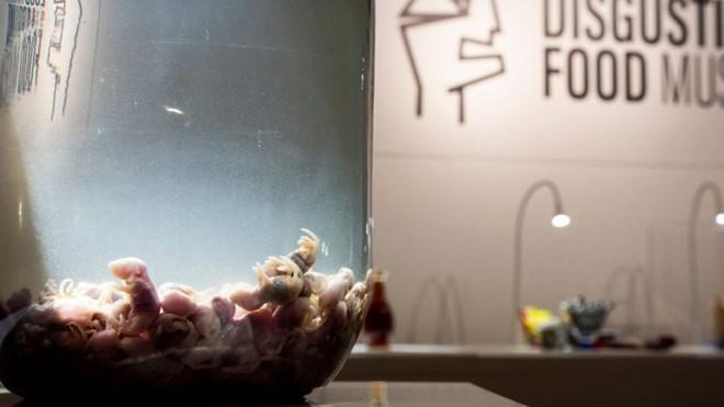 Trứng vịt lộn, sầu riêng được trưng bày tại bảo tàng đồ ăn kinh dị-3