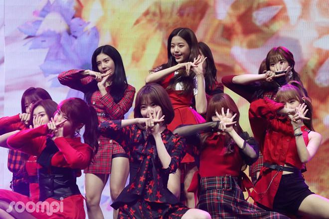 Nhóm nhạc 12 hot girl chào sân Kpop với thành tích ấn tượng-3