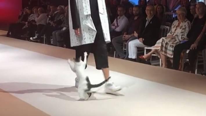 Người mẫu bị tấn công trên sàn catwalk ở Thổ Nhĩ Kỳ nhưng không ai nỡ đuổi thủ phạm-2