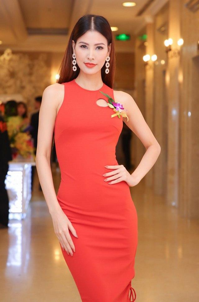 Miss Earth – Hoa hậu Trái đất ghi dấu ấn của người đẹp Việt-6