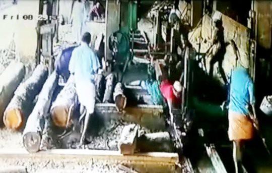 Clip: Người đàn ông đứt lìa bàn tay do ngã vào máy cưa lúc bị bò truy đuổi-1