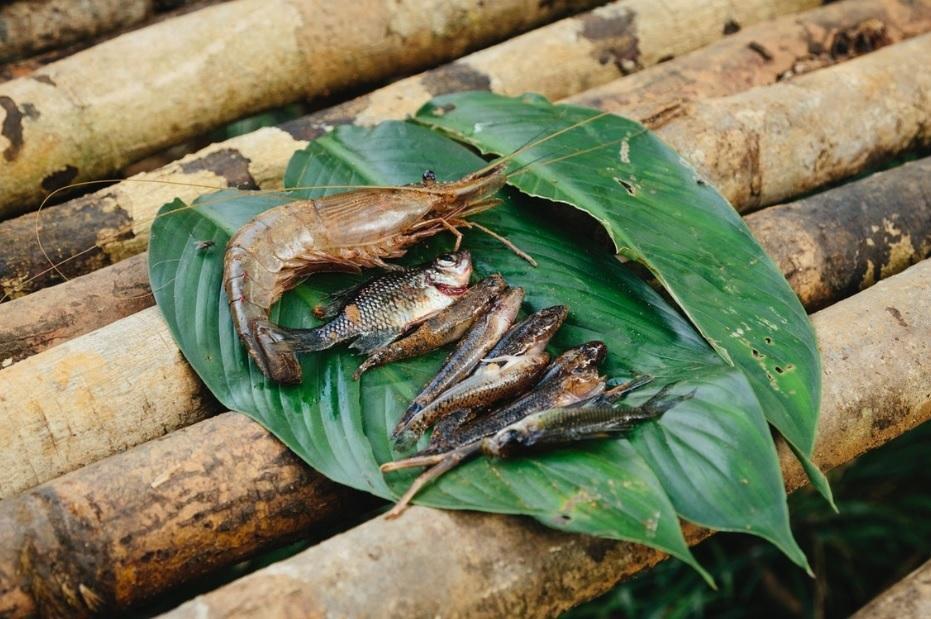 Bộ lạc từng ăn thịt người, sống hoang dã và nguyên thủy nhất thế giới-5