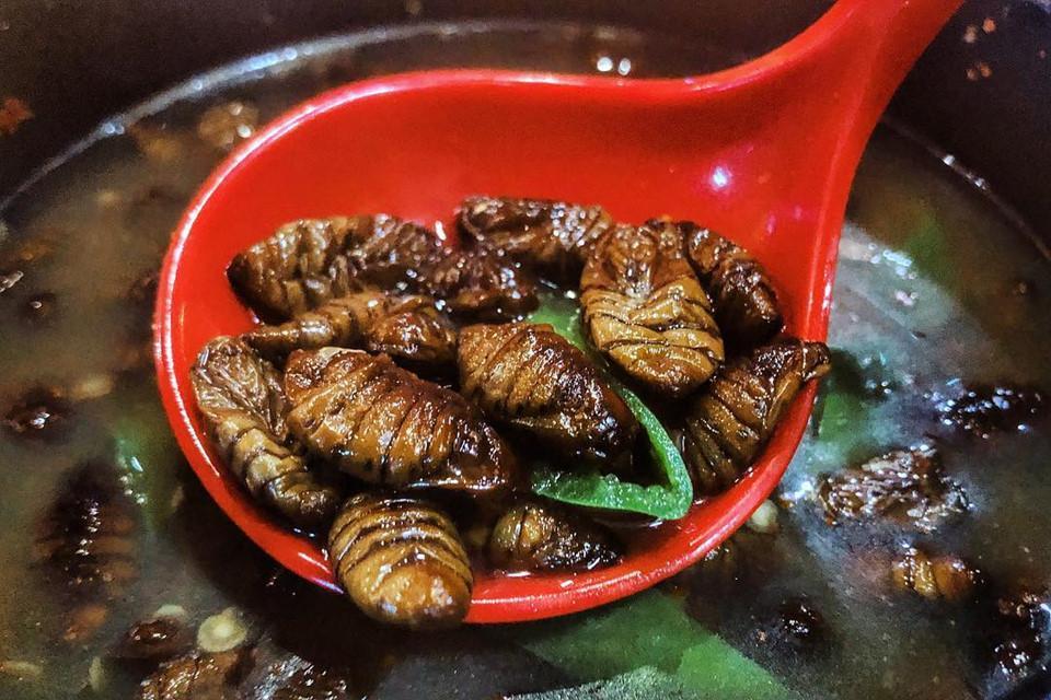 Gián chiên, rết nướng và loạt món ăn kinh dị khắp châu Á-1