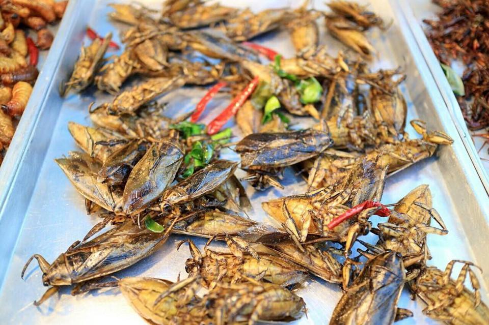 Gián chiên, rết nướng và loạt món ăn kinh dị khắp châu Á-4
