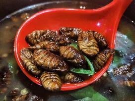 Gián chiên, rết nướng và loạt món ăn kinh dị khắp châu Á
