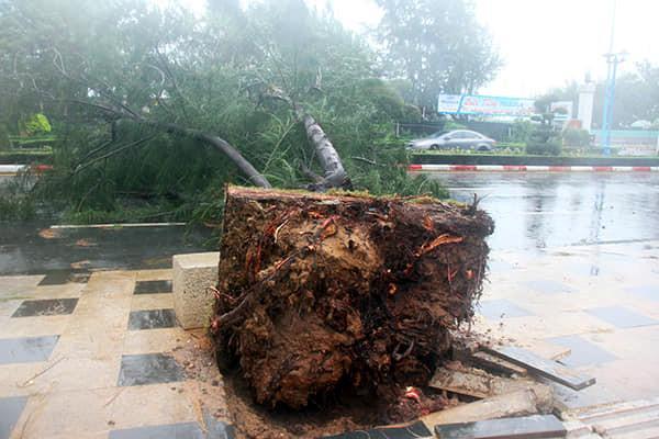 Lan tỏa hình ảnh khách sạn tại Vũng Tàu đón người nghèo tránh bão số 9-4