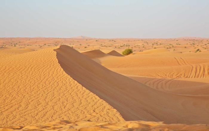 Nghe dân bản địa Dubai hé lộ địa điểm trên cả tuyệt vời du khách không thể bỏ lỡ-6